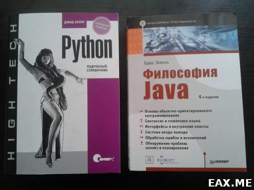 """Книги """"Философия Java"""" и """"Python - подробный справочник"""""""