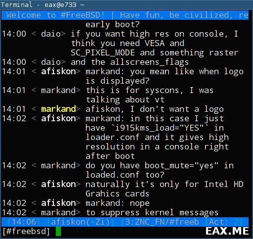 Консольный IRC-клиент irssi
